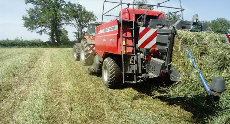 Tracteur et presse à balle carrée Massey Ferguson